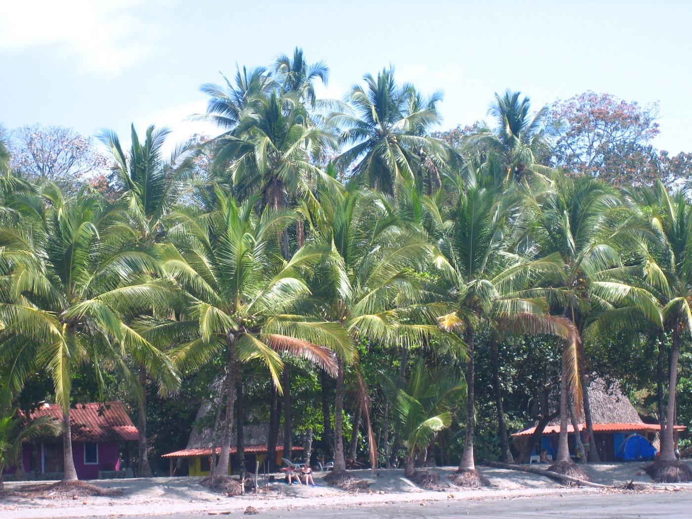 Santa Catalina Panama (c) Anja Knorr