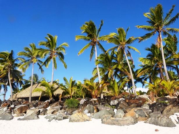 Strand Palmen Cookinseln (c) Anja Knorr