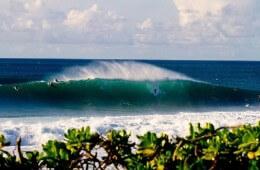 Hawaii Oahu Pipeline (c) Peter Liers