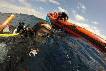 Divemaster Ausbildung