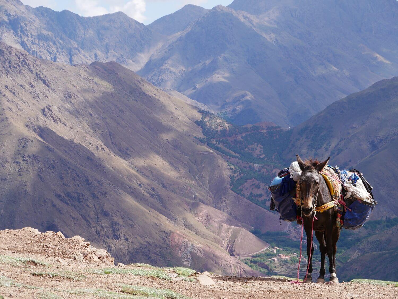 Marokko wandern