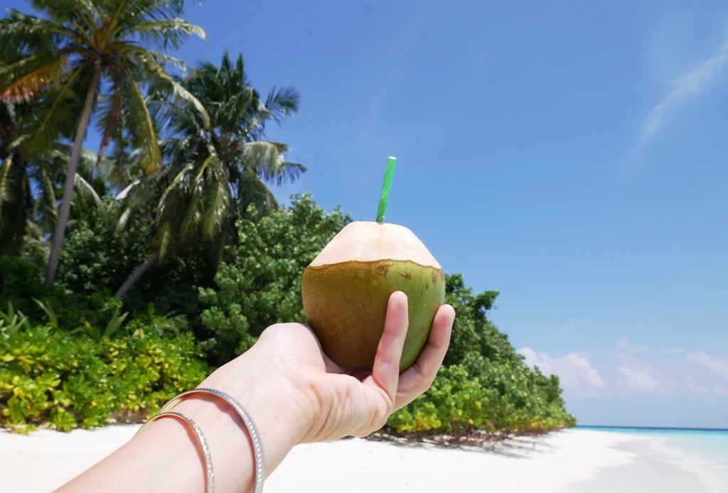 Malediven Strand Kokosnuss